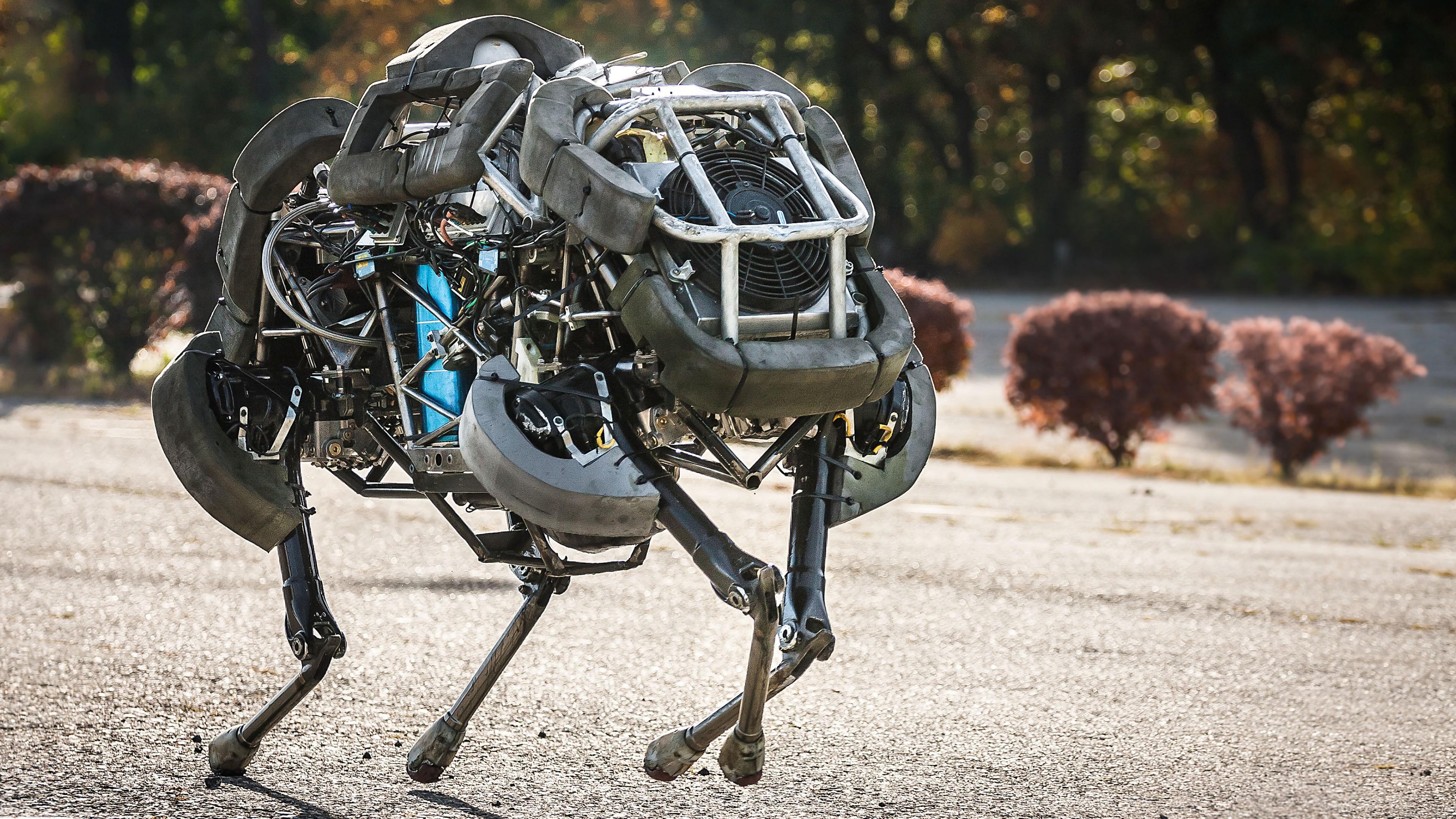 robot-3840x2160-dikiy-kot-skorost-2778.jpg